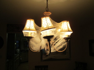 Scary lights!  Just take the spiderwebs and wrap your lights, super easy and there is always a ton of that leftover at the stores, super cheap!