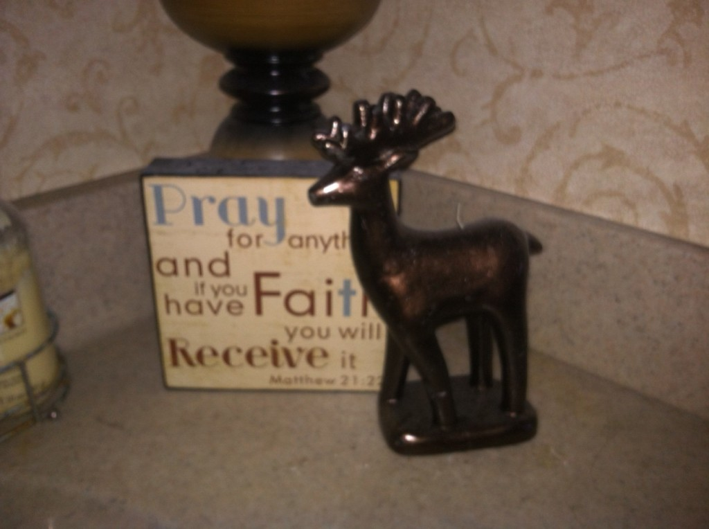I found this cute reindeer candle, He is in our downstairs bath, total cost $1.00!
