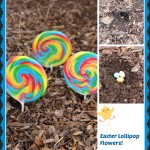Growing Easter Lollipops!