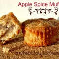 apple spice final