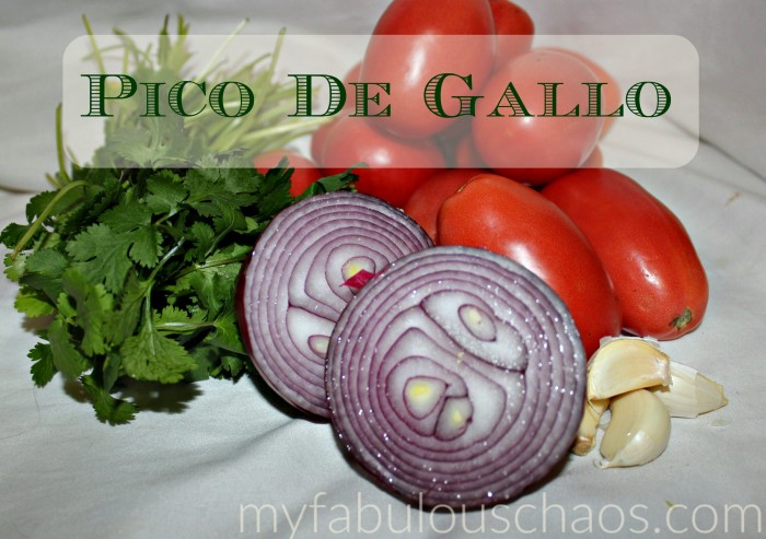 Pico de Gallo - Fresh Homemade Salsa ... all the wonderful tex-mex flavors fresh from your kitchen